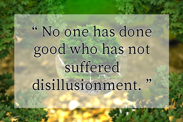 No one has done good who has not suffered disillusionment.