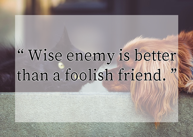 Wise enemy is better than a foolish friend.